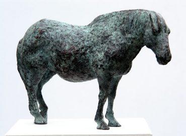 pferd1_1